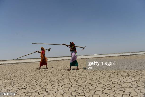 Indian salt pan workers Kaliben Savjibhai and Kamlaben walk with their tools after salvaging the mineral from flooded salt pans near Odu village in...