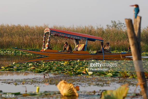 Indian security cruises along Dal Lake as a Kingfisher bird sits on a post October 4 2008 in Srinagar Kashmir In the past few months the region's...