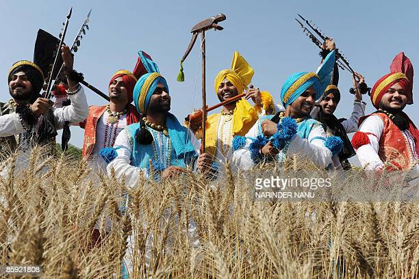 Indian Sikh youths perform the traditional Punjab Folk dance �Bhangra� in a wheat field on the outskirts of Amritsar on April 12 2009 the eve of the...
