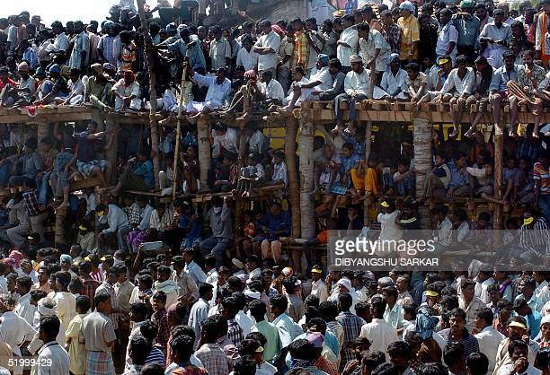 Indian spectators sit on a temporary gallery as they gather to watch a bull taming festival popularly known as 'Jallikattu' in the village of...