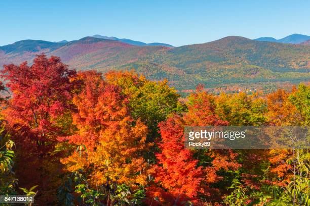 indian summer in new hampshire, usa - deciduous tree stock pictures, royalty-free photos & images