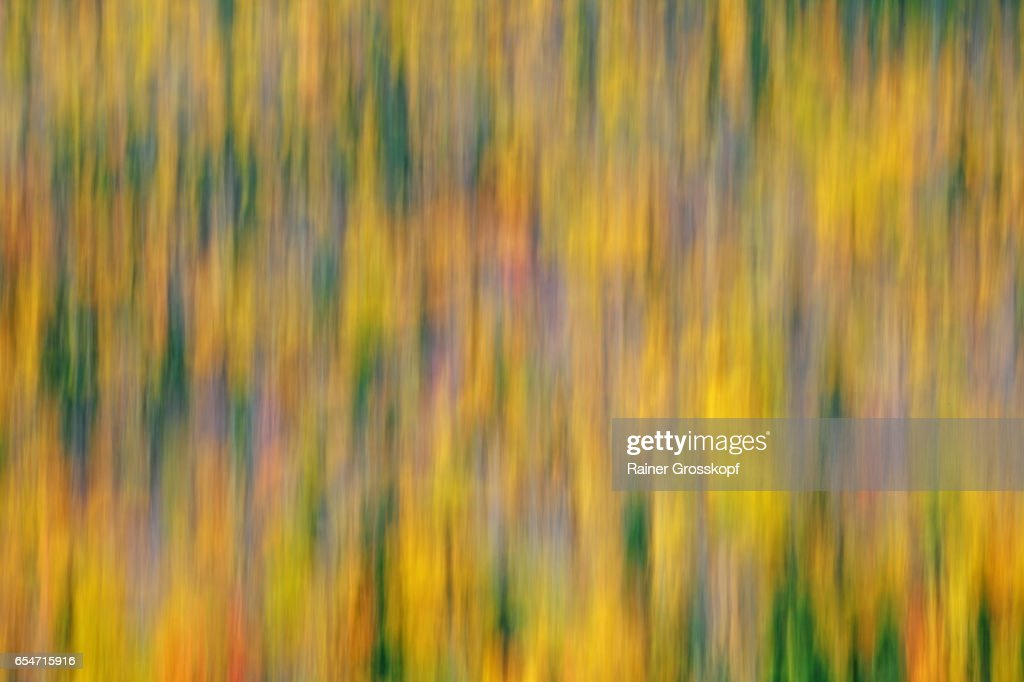 Indian Summer (blurred) : Stock-Foto