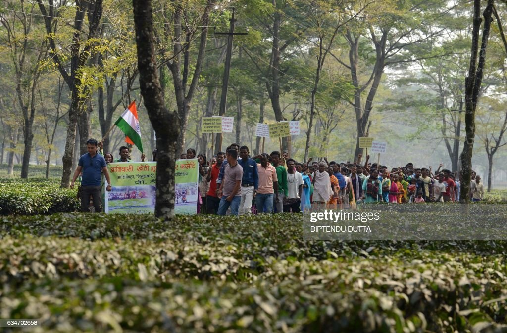 Indian tea garden workers protest at Simulbarie Tea Garden, on the outskirts of Siliguri, on February 11, 2017. The management of the tea estate has announced suspension of work, alleging that a section of workers along with 'land mafias' is preventing it from planting tea saplings on unused land. / AFP / DIPTENDU