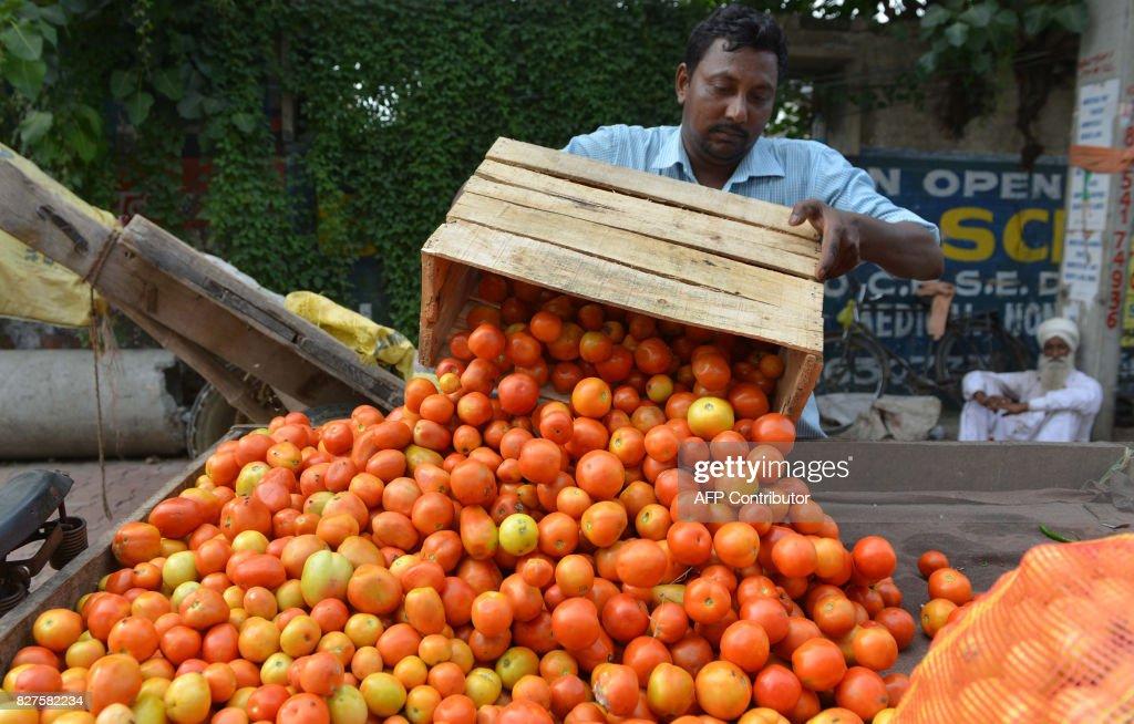 Indian vendor Rajinder delivers tomatoes for sale at a roadside stall in Amritsar on August 8 2017 / AFP PHOTO / NARINDER NANU