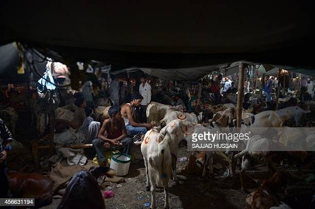 Indian vendors sit with their goats for sale at a livestock market ahead of the sacrificial Eid alAdha festival in the old quarters of New Delhi on...