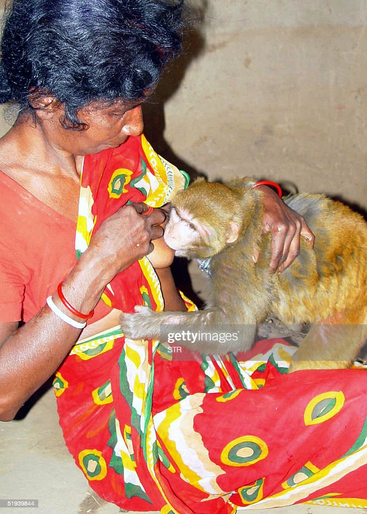 Indian villager Namatia Ghosh breast fee : News Photo