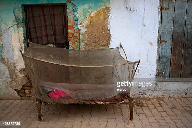 indian woman and mosquito net - malaria parasite stock pictures, royalty-free photos & images