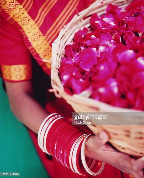 indian woman holding a basket of rose petals - hugh sitton stock pictures, royalty-free photos & images