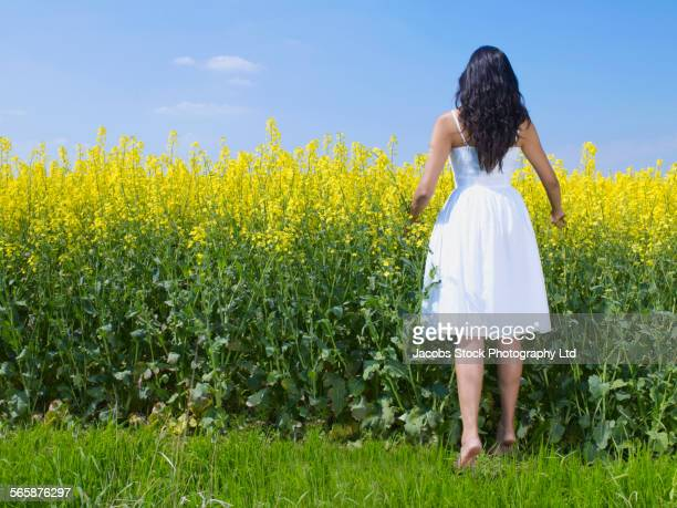 Indian woman peering over field of flowers
