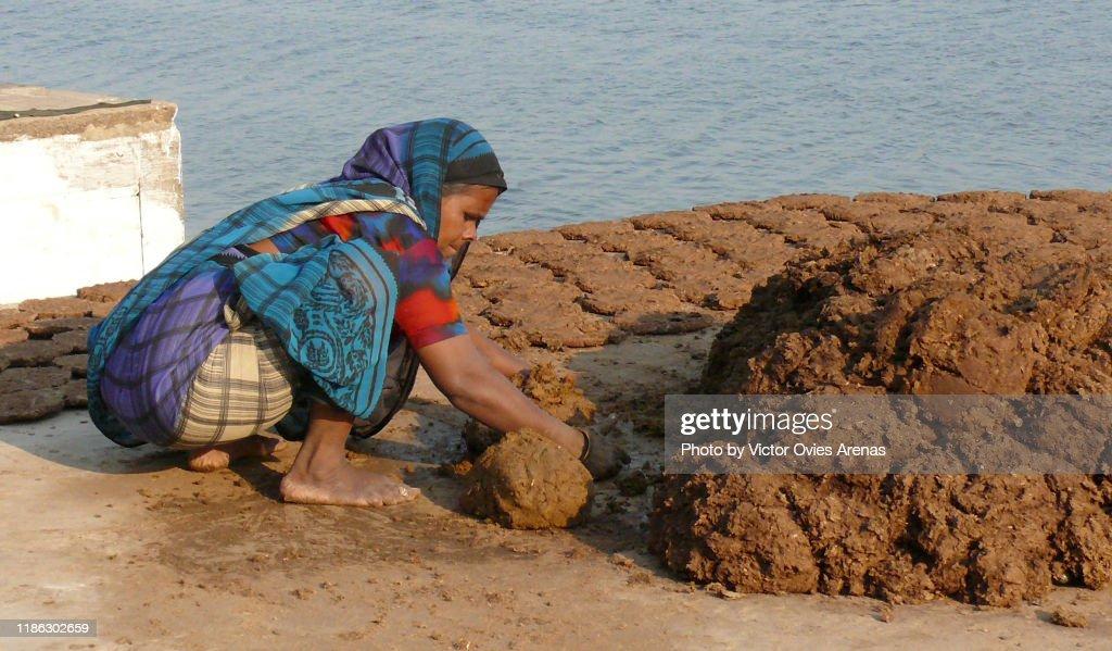 """Indian woman preparing """"Dung Cakes"""" in Varanasi, Uttar Pradesh, India : Foto de stock"""