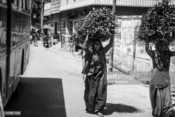 indian women moving wood - jong heung lee stock pictures, royalty-free photos & images