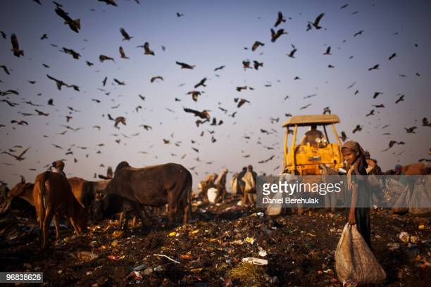 Indian workers called Rag Pickers sort through garbage and pick out recyclable materials to sell from the 70 acre Ghazipur Landfill Site on February...