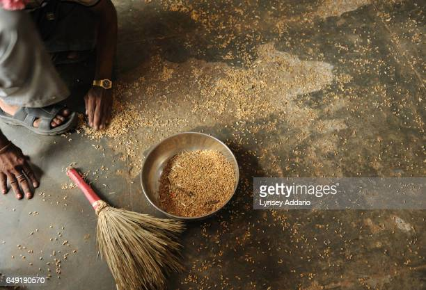 Indian workers collect spilled grain at a Fair Price Shop which sells wheat sugar kerosene and rice at subsidized prices to Indians with ration cards...