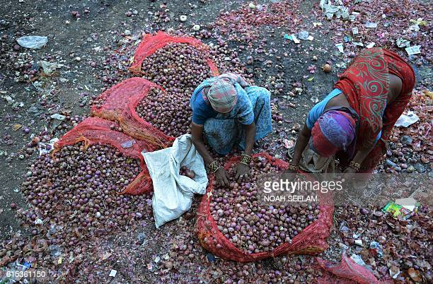 Indian workers search for edible onions from those discarded by farmers at the Malakpet Agriculture Market Yard in Hyderabad on October 18 2016...