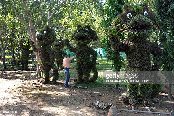 Indian workers tend to the decorative hedges representing Shera the New Delhi Commonwealth Games mascot at a forest plantation center near the Games'...