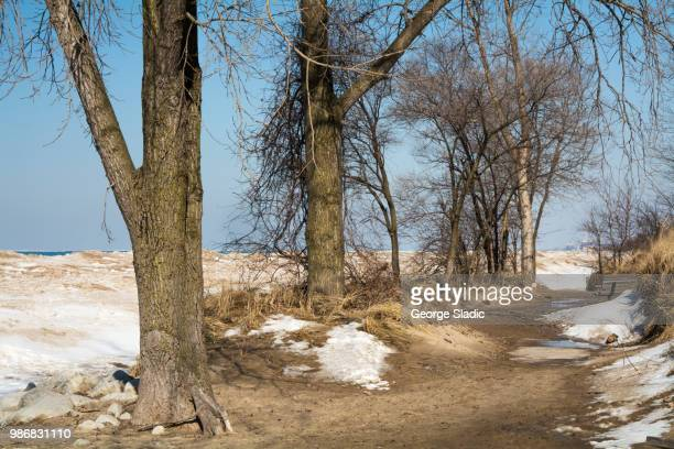 indiana dunes national lakeshore in late winter - indiana dunes national lakeshore stock photos and pictures