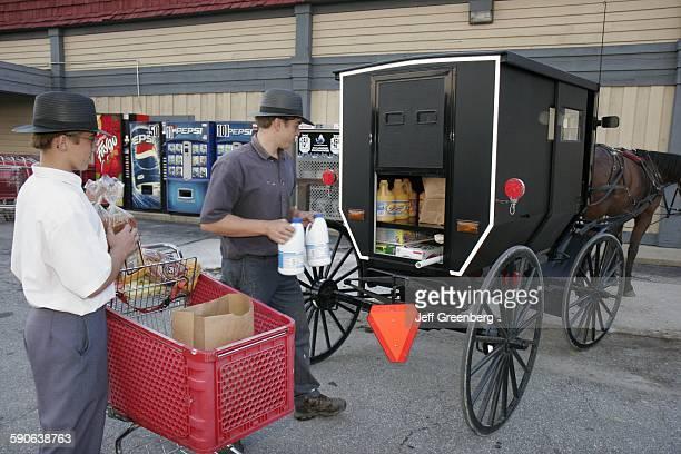 Indiana Nappanee Amish Teen Boys Brothers Groceries Buggy