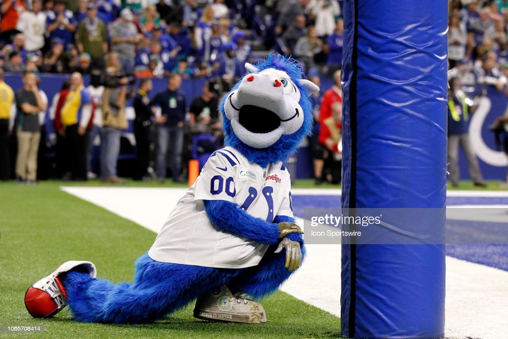 Indianapolis Colts Mascot Blue Strikes A Pose During The Nfl Game News Photo Getty Images