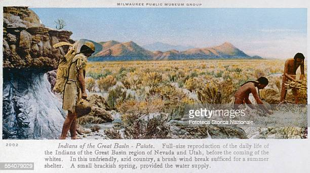 ' Indians of the Great Basin Paiute Fullsize reproduction of the daily life of the Indians of the Great Basin region of Nevada and Utah before the...
