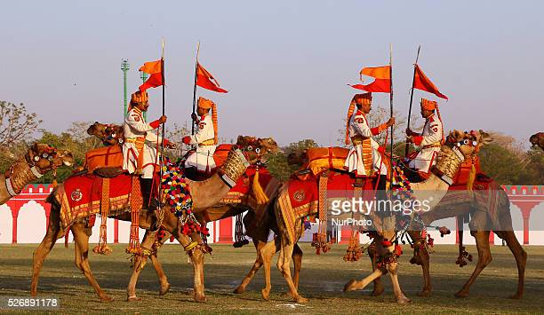 India's Border Security Force soldiers performing their skills with camels during the ' Camel Tattoo Show' on the eve of Rajasthan Festival...
