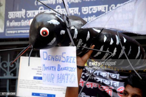 India's ruling political party BJP Yuba Morcha Supporters hold a Mosquito cart out and a demonstration in front of the Kolkata Municipal Corporation...