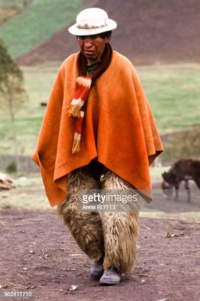 Indien Puruha portant un pantalon en peau d'âne à Tixan dans la province du Chimborazo Equateur