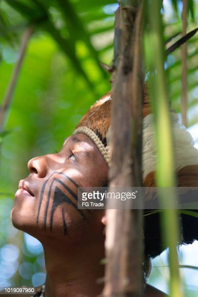 indígena jovem brasileiro, explorando a floresta tropical - da etnia guarani - indio - fotografias e filmes do acervo