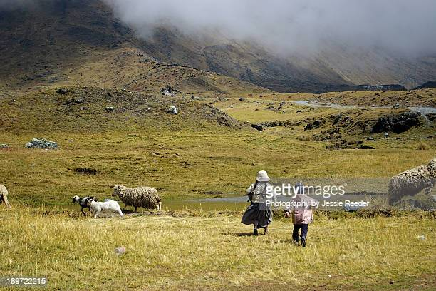 Indigenous children in the mountains of Bolivia
