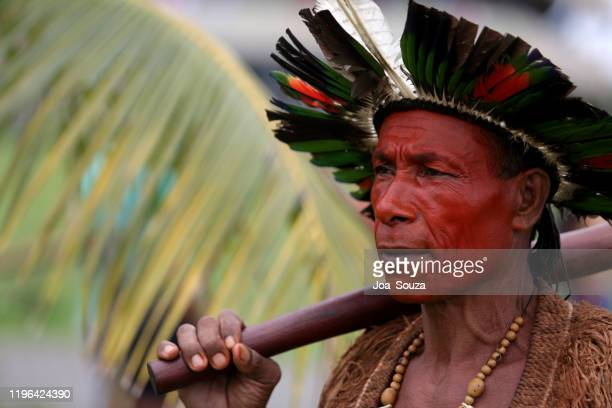 indigenous - minority groups stock pictures, royalty-free photos & images