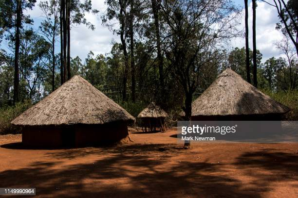 indigenous thatched huts - kenya newman stock pictures, royalty-free photos & images