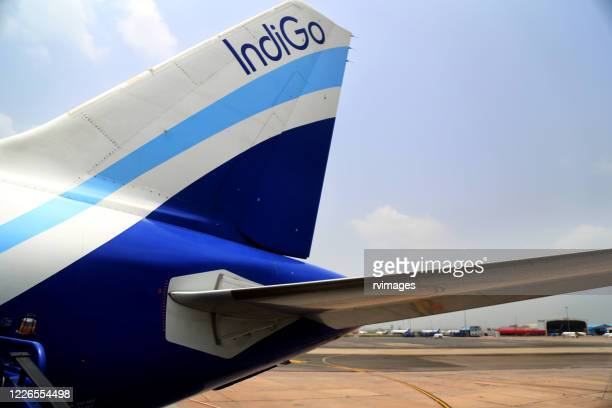 indigo flight  standing at indira gandhi airport, new delhi, india - navy blue stock pictures, royalty-free photos & images