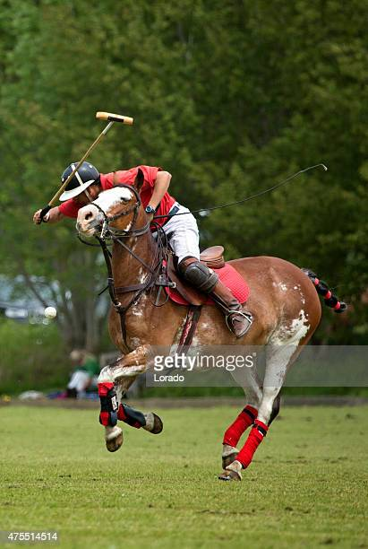 individual polo player on a horse - polo stock pictures, royalty-free photos & images