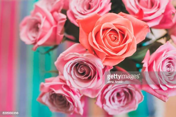 individuality concept pink roses in a vase - saint valentin photos et images de collection