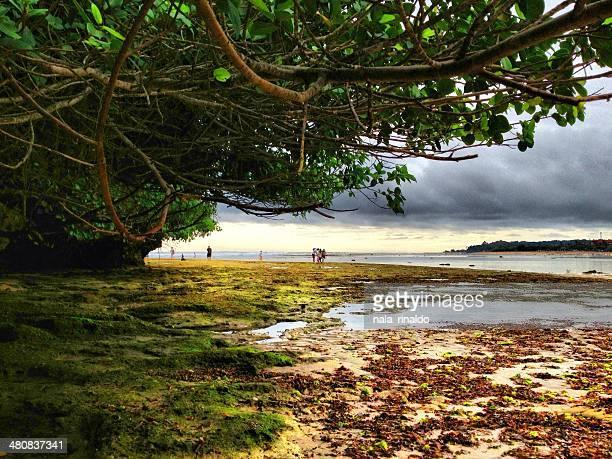 Indonesia, Bali, Afternoon at Nusa Dua beach