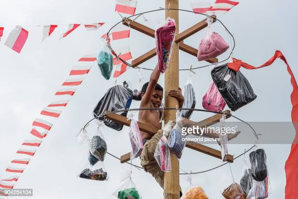 Indonesia Bali Kabul Buleleng trunk climbing the village youth The goal is to reach the tip of an oiled palm stem with small gifts A team is being...