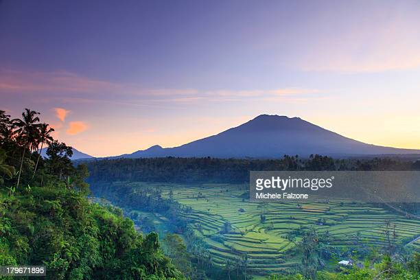 indonesia, bali, rice fields and volcanoes - reisterrasse stock-fotos und bilder