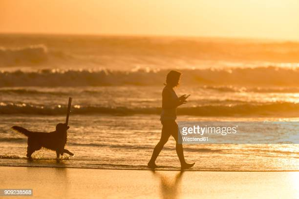 Indonesia, Bali, silhouette of woman walking with her dog on the beach at sunset