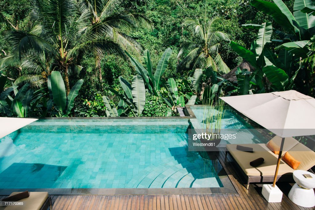 Indonesia Bali Tropical Swimming Pool Stock-Foto - Getty Images