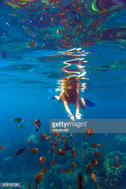 Indonesia, Bali, young woman snorkeling with fish