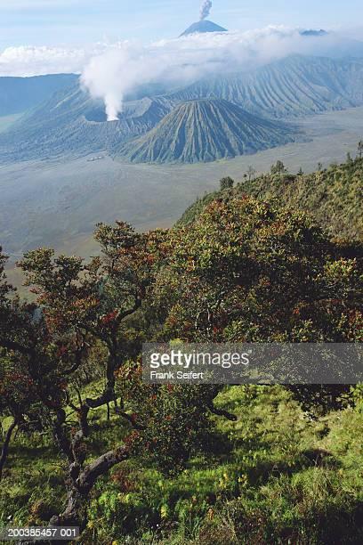 indonesia, java, mt bromo and mt semeru volcanoes erupting - mt semeru stock pictures, royalty-free photos & images