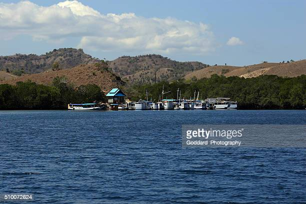 indonesia: ships and boats at rinca island - rinca island stock pictures, royalty-free photos & images