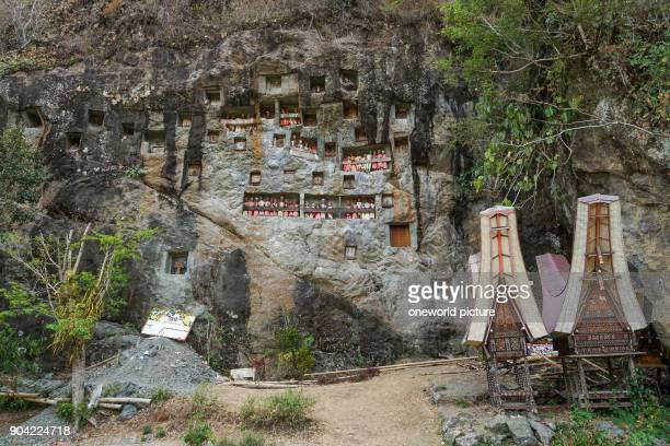 Indonesia Sulawesi Selatan Tana Toraja Torajaland wooden figures and rock tombs dew are carved wooden figures rock tombs death cult