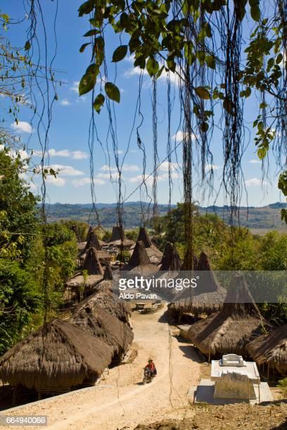 Indonesia, Sumba island, Praiji village.