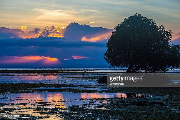 Indonesia, Sumbawa island at sunset