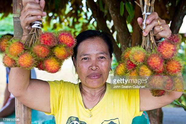 CONTENT] Indonesia West Papua ethnic Asian Indonesian woman selling fresh rambutan fruit West Papua province has seen considerable inward migration...