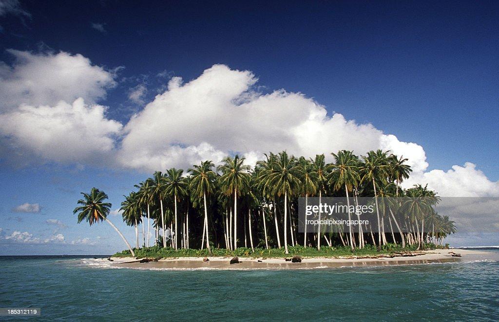 Wave Park Surf Resort, Mentawai Islands - Soul Surf Travel