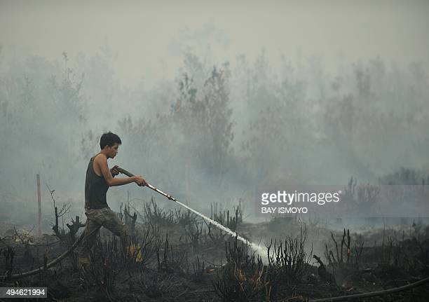 IndonesiaenvironmentpollutionFOCUS by Dessy Sagita This photo taken on October 27 2015 shows a volunteer extinguishing a peatland fire in the...