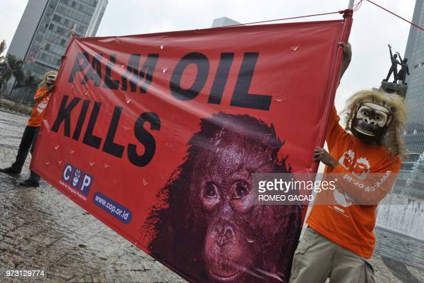 Indonesian activists from the Centre for Orangutan Protection wearing ape masks display a banner blaming the clearing of land for palm oil...
