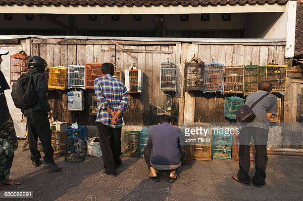Indonesian bird market