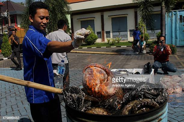 Indonesian customs burn the seized shipment of 13 tons of frozen pangolin bound for Singapore during a ceremony destroying the seized illegal...